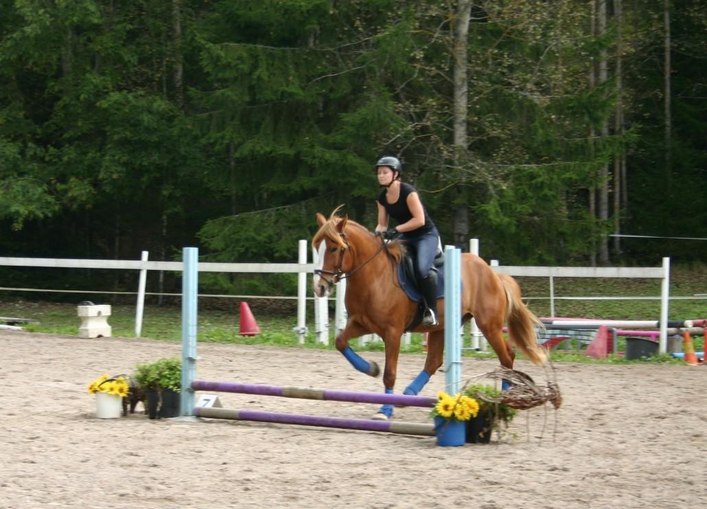 """Prinssinakin ensimmäinen """"hyppy"""" ratsastajan kanssa"""